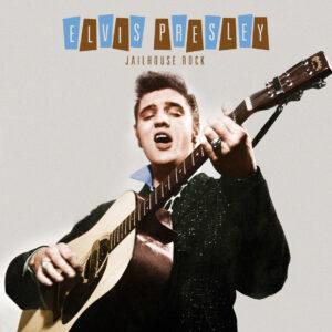 Elvis Presley Vinylbag